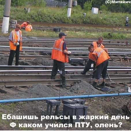 http://www.udaff.com/image/139/13902.jpg