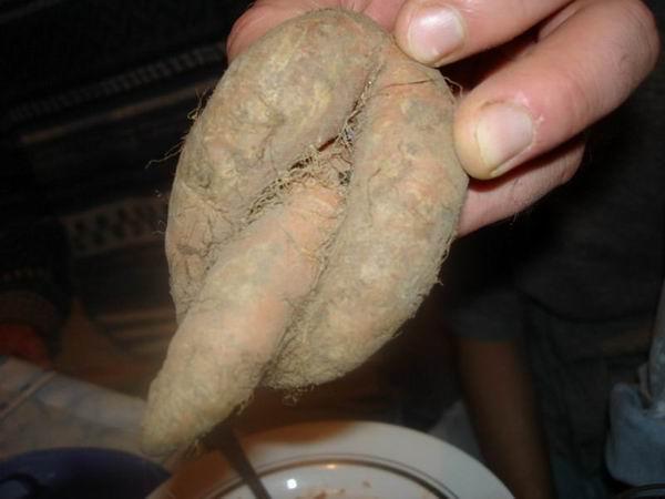 Порно фото трах бабушек