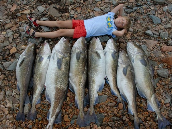 сонник поймать огромную рыбу на удочку