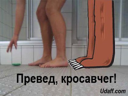 http://udaff.com/image/221/22172.jpg