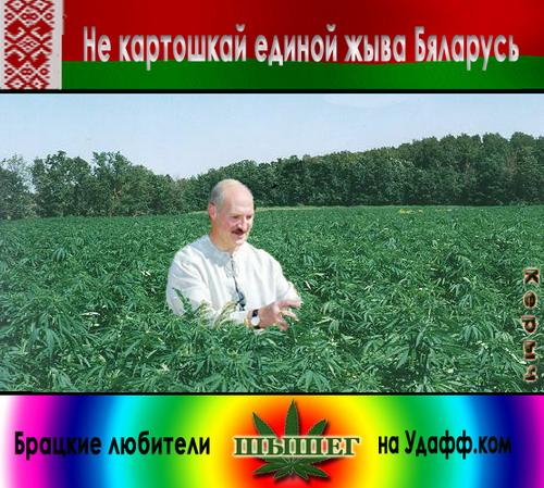 pizdatie-statusi-pro-anashu