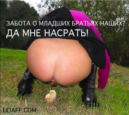 http://udaff.com/image/275/27581.jpg