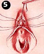 foto-vsya-devka-v-sperme