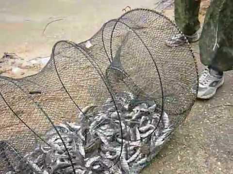 Как сделать морду для ловли рыб