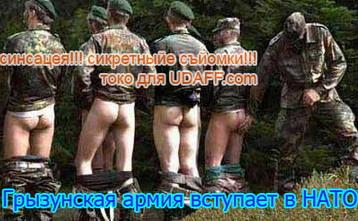 http://udaff.com/image/398/39862.jpg