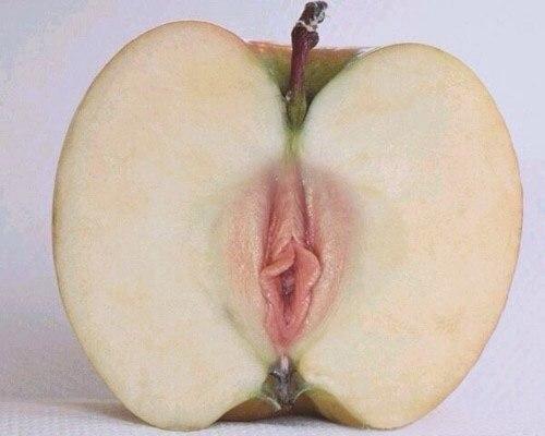 Порно рассказы яблочко от яблоньки все части