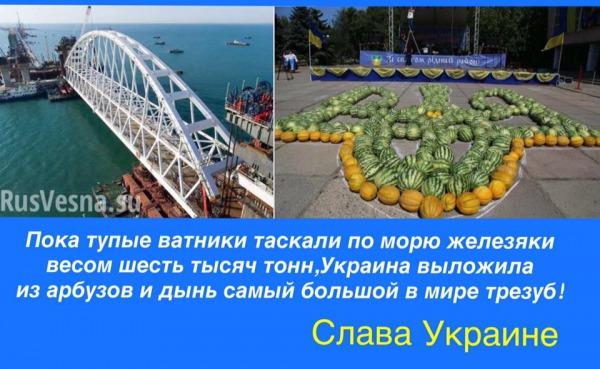 http://udaff.com/image/50/46/504641.jpg