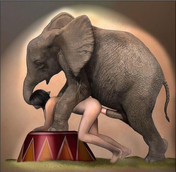 сэкс слон