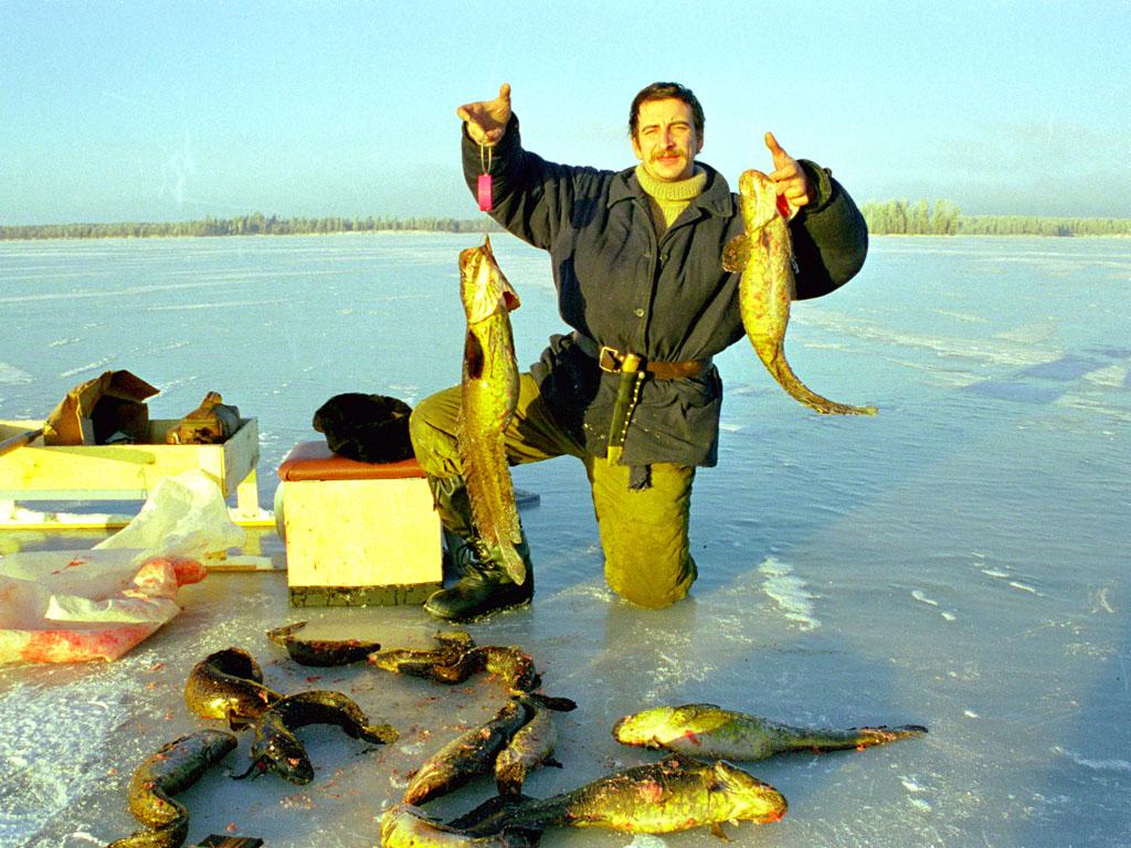 рыболов рыбалка налима